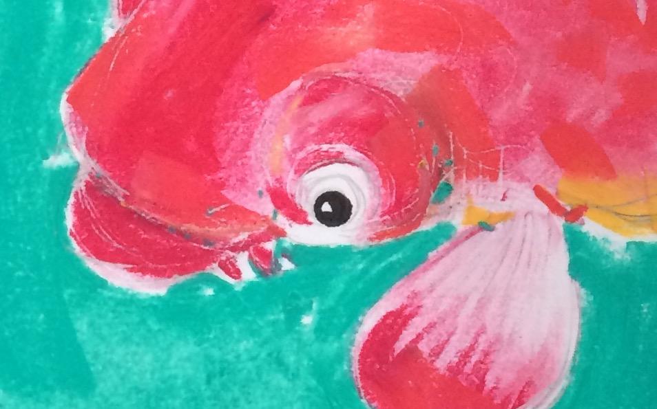 gold fish eye